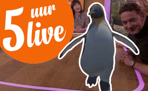 King Penguin at 5 Uur Live - DTT blog